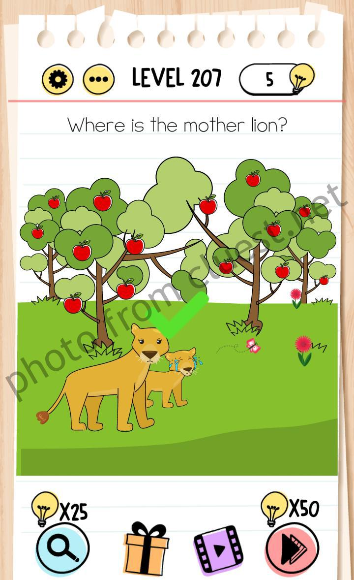 Brain Test Level 207 Where Is The Mother Lion Answers Cluest